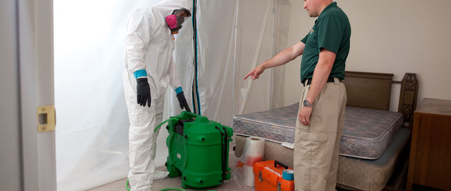 Arlington, MA mold removal process